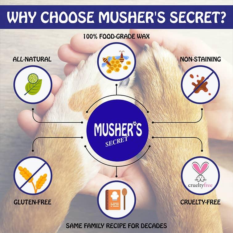 Mushers Why choose