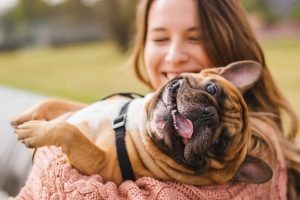 Mushers Secret Ways Dogs Improve Your Quality of Life